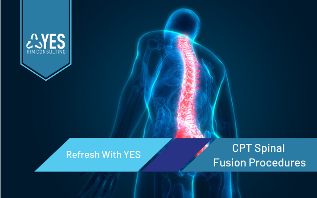 CPT Spinal Fusion Procedures | Ceus Included