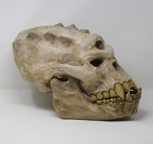 Load image into Gallery viewer, Life-size Troll Skull