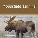 Moosehide Tanning (English)