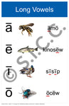Vowels (Set of 2) (Swampy Cree N)