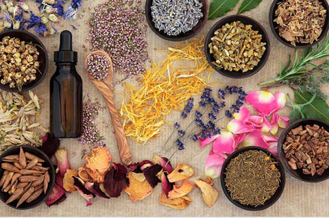 Natural Medicine and Herbal Treatments For Autoimmune Diseases