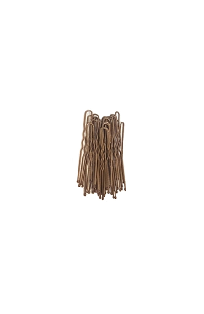FH2 AZ0029 2 Inch Hair Pins Light Brown