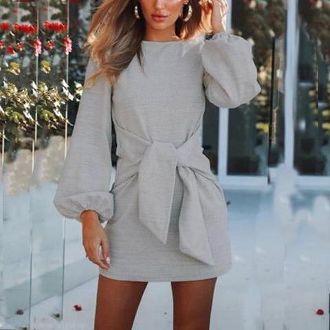 Crew Neck  Belt  Puff Sleeve Skater Dresses