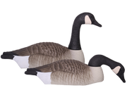 Field Series Canada Goose Shell Touchdown 12 Pack