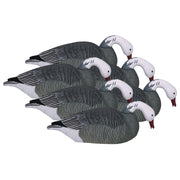 Pro-Series Oversized Blue Goose Shells - TouchDown & Feeder 6-Pack