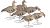Rugged Series Full Body Specklebelly Goose 6-Pack Touchdown - Fully Flocked