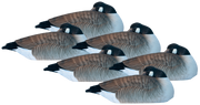 Rugged Series Canada Goose Sleeper Shell - Fully Flocked 6pk