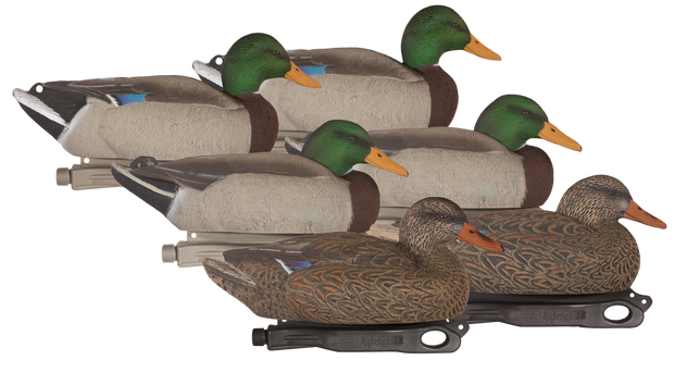 Rugged Series Standard Mallard