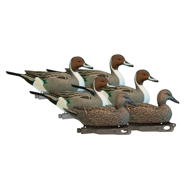 Rugged Series Pintails