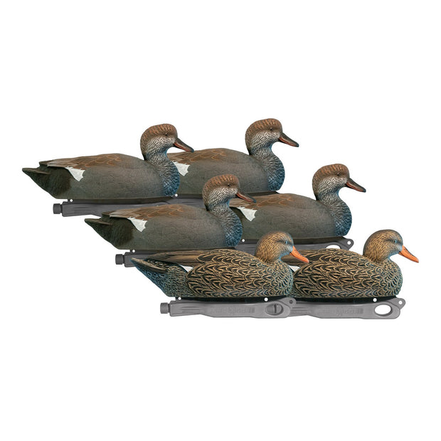 Rugged Series Gadwall