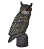 Field-Series Hooter Owl