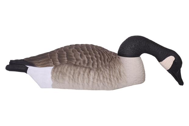 Field Series Canada Goose Shell Feeder