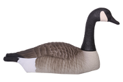 Field Series Canada Goose Shell Sentry