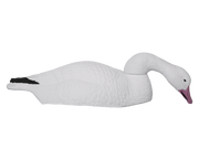 Field Series Snow Goose Shell Feeder