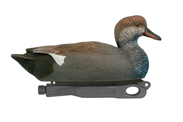 Rugged Gadwall Drake Floater