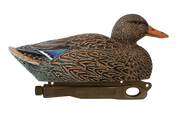 Rugged Mag-Mallard-Hen-Active_Stnd-Paint_RS