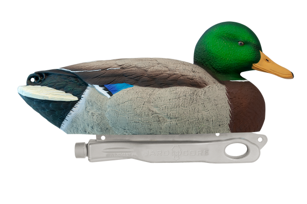 Rugged Mag-Mallard_Resting-Drake_Stnd-Paint_RS