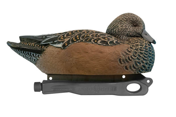 Rugged Series Wigeon Hen Floater