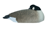Rugged Series Canada Goose Sleeper Shell - Flocked Head