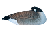 Rugged Series Canada Goose Sleeper Shell - Fully Flocked