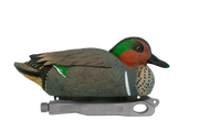 Rugged Green-winged Teal Rester Drake Floater