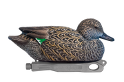 Rugged Green-winged Teal Rester Hen Floater