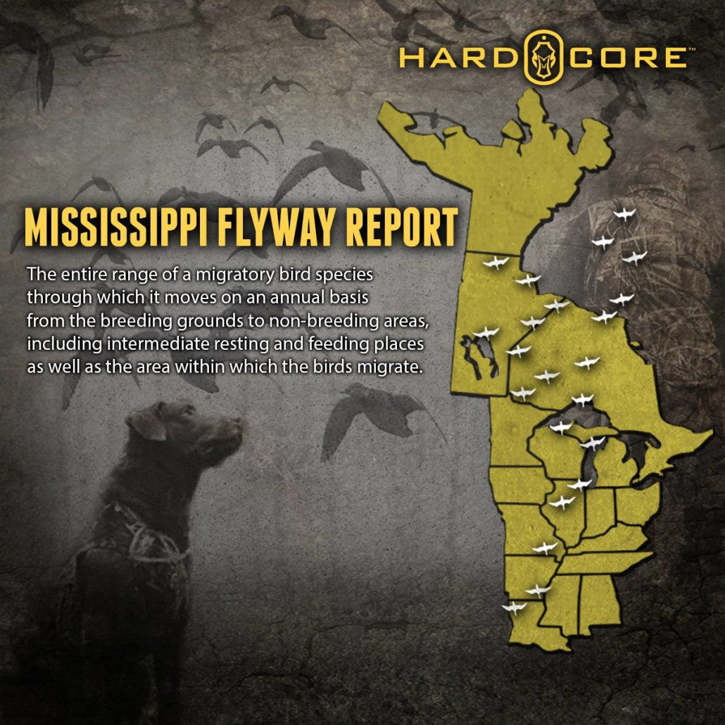 Mississipi Flyway | Hard Core Brands