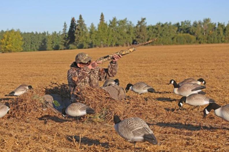 Waterfowl Concealment | Hard Core Brands