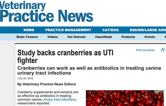 Cranimals Featured in Veterinary Practise News
