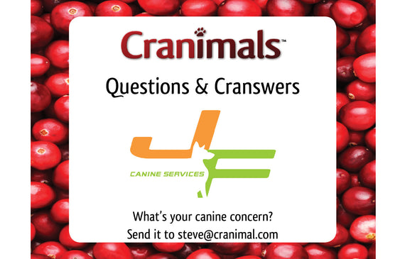 Cranswers with J&F!