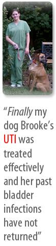 Finally my dog Brooke's UTI was treated effectively and her past bladder infections have not returned - Interview with Jennifer Norato