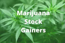 Load image into Gallery viewer, How to trade Marijuana Stock Options Picks , Weekly & Earnings Marijuana Stock Options Alerts 1 Month
