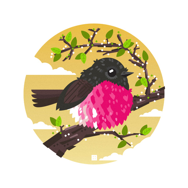 "Danny Haas ""The Pink Robin"" Print"