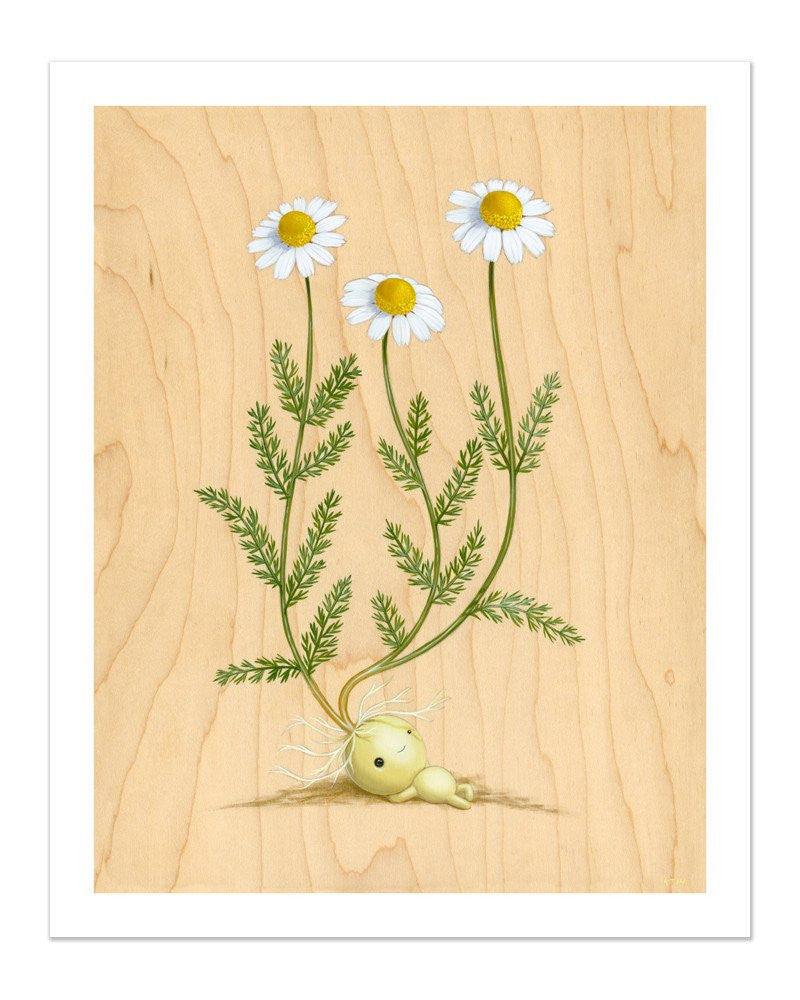 "Cuddly Rigor Mortis ""Emily Chamomile"" Print"