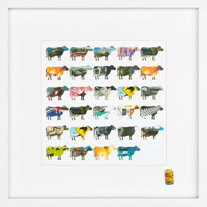 Herd Series – Large