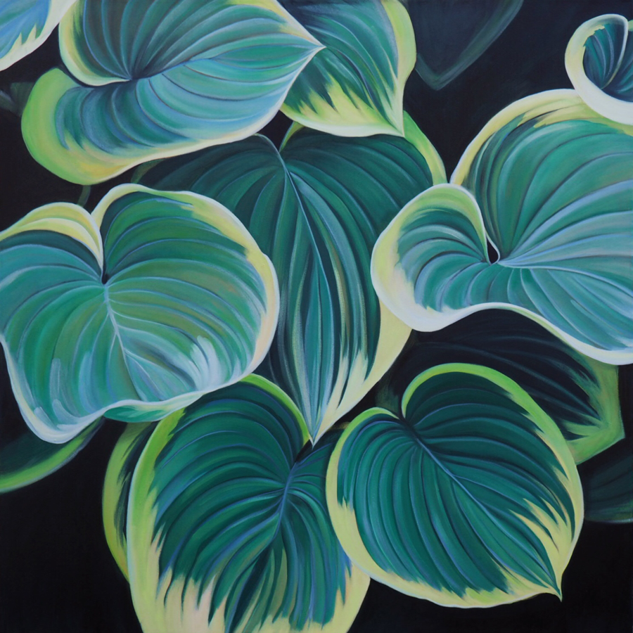Hosta by Laura Dick