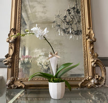 Load image into Gallery viewer, Adore Mini Orchid Planter