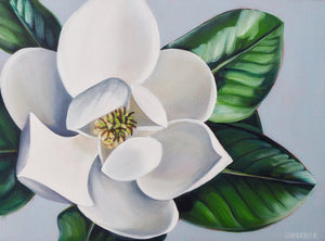 Magnolia II by Laura Dick