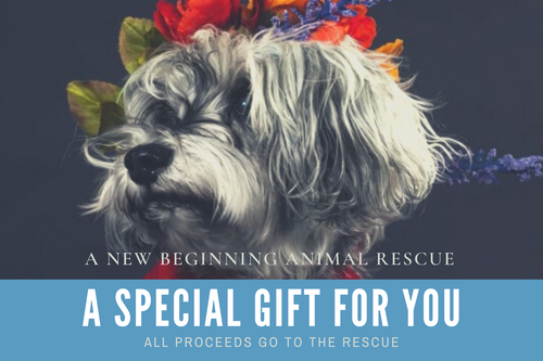 A New Beginning Animal Rescue Gift Card