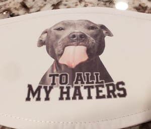 "Pitbull ""To All My Haters"" Mask"