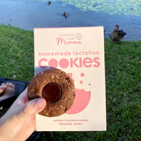 double choc lactation cookies