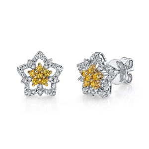 14K 0.4 Cttw VS Yellow and White Diamond Earrings - TVON.com