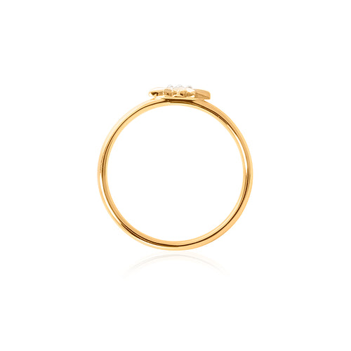 9ct Yellow Gold Mininova Diamond Ring