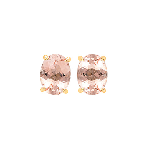 18ct Rose Gold Corona Morganite Earring (Oval)