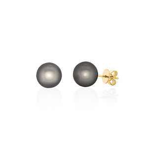 18ct Yellow Gold South Sea Pearl Studs