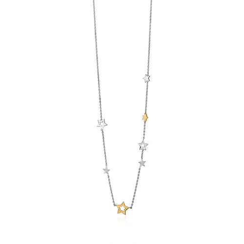 Silver and 9ct Gold Stargazers Necklace