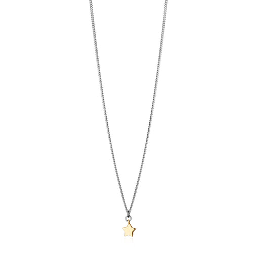 Silver and 9ct Gold Starlet Necklace
