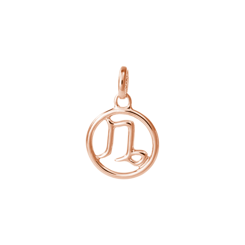18ct Rose Gold Vermeil Plated Capricorn Zodiac Charm