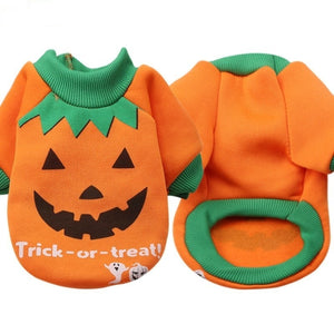 Trick-or-Treat Dog Halloween Jacket
