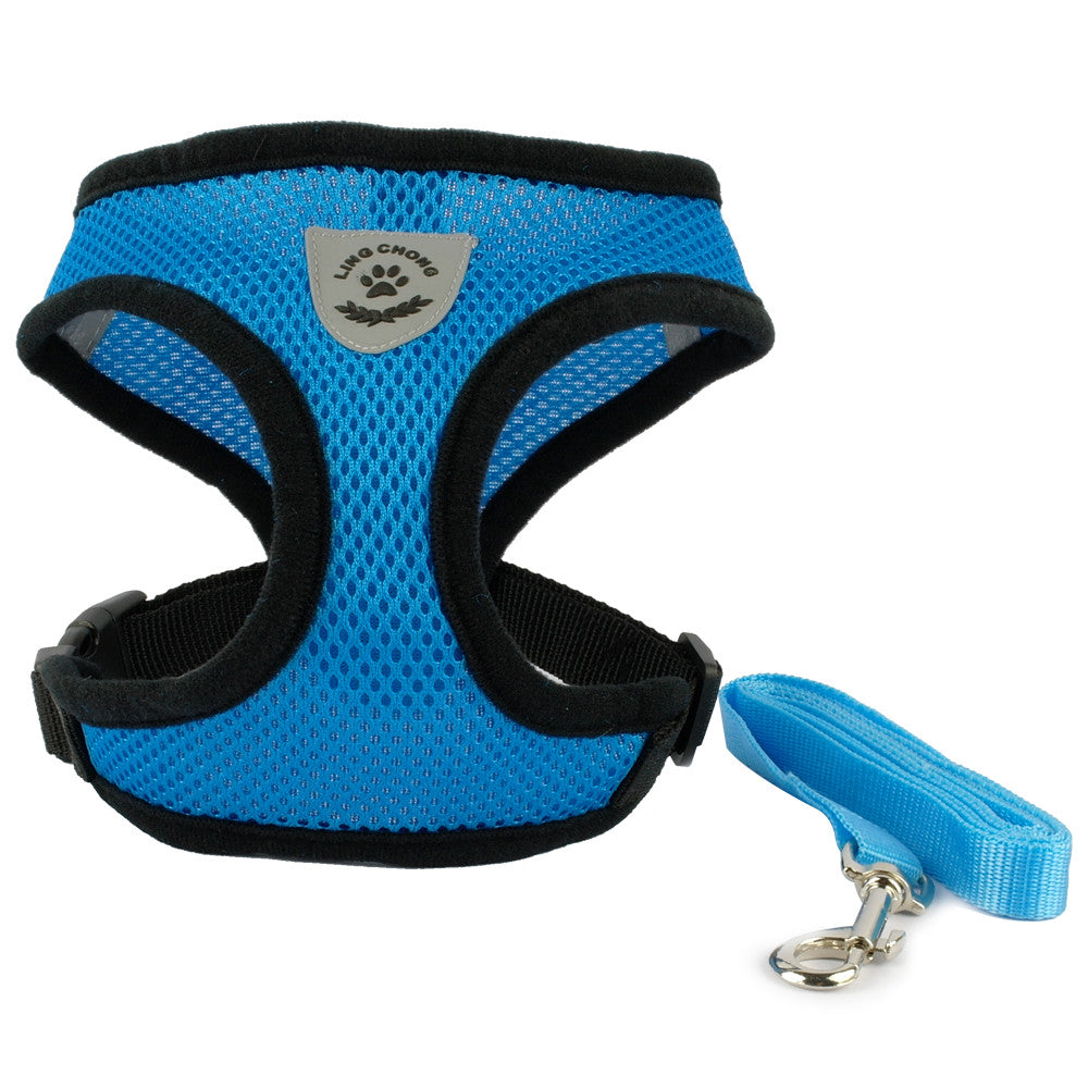 Essential Pet Harness & Leash - The Happy Cerberus